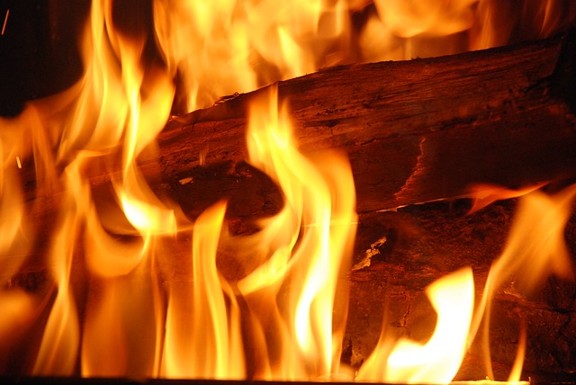 The image is a photo of a piece of wood burning in a fire.